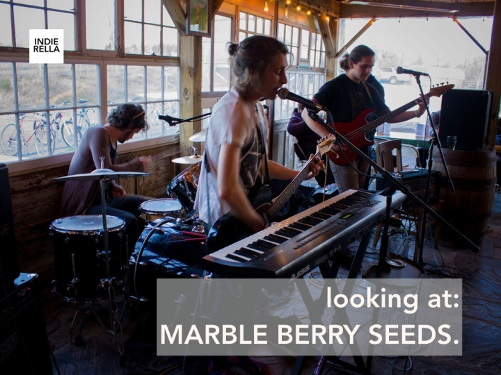 looking at: MARBLE BERRY SEEDS.