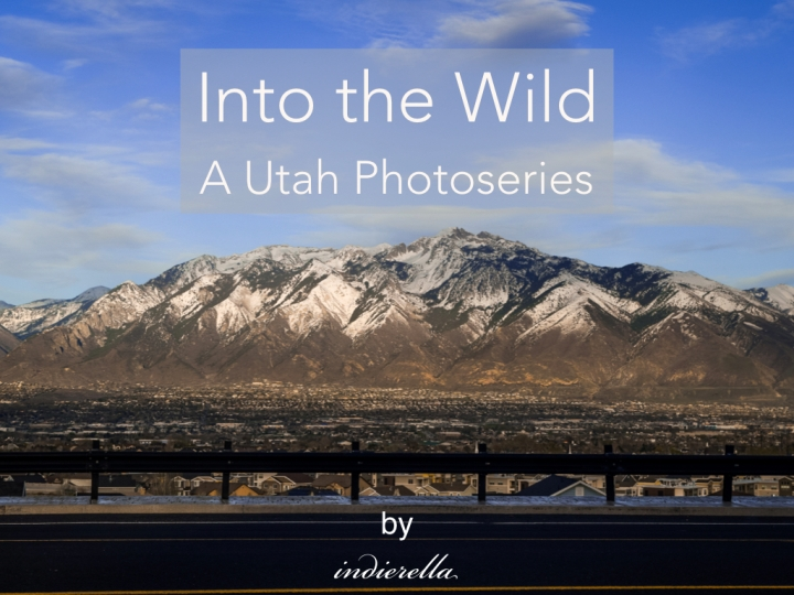 Into the Wild – A Utah Photoseries